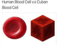 big if true: Human Blood Cell v.s Cuban  Blood Cell big if true