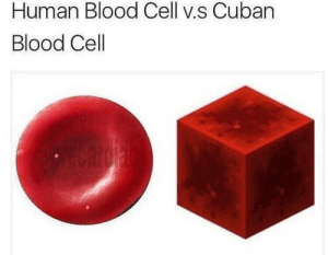They must all have glowstone lamps too: Human Blood Cell v.s Cuban  Blood Cell They must all have glowstone lamps too