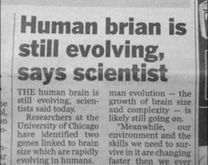 "Chicago, Brain, and Evolution: Human brian is  still evolving,  says scientist  THE human brain is man evolution - the  still evolving, scien- growth of brain size  and complexity -is  tists said today  Researchers at the likely still going on.  University of Chicago ""Meanwhile, our  have identified two environment and the  