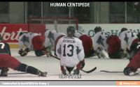 human centipede: HUMAN CENTIPEDE  ATKINSON  CBJ STYLE  andcrafted by BestofB0B for iFunny