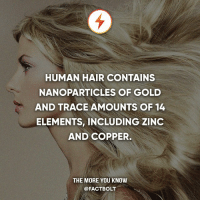 Memes, The More You Know, and Hair: HUMAN HAIR CONTAINS  NANOPARTICLES OF GOLD  AND TRACE AMOUNTS OF 14  ELEMENTS, INCLUDING ZINC  AND COPPER.  THE MORE YOU KNOW  @FACTBOLT