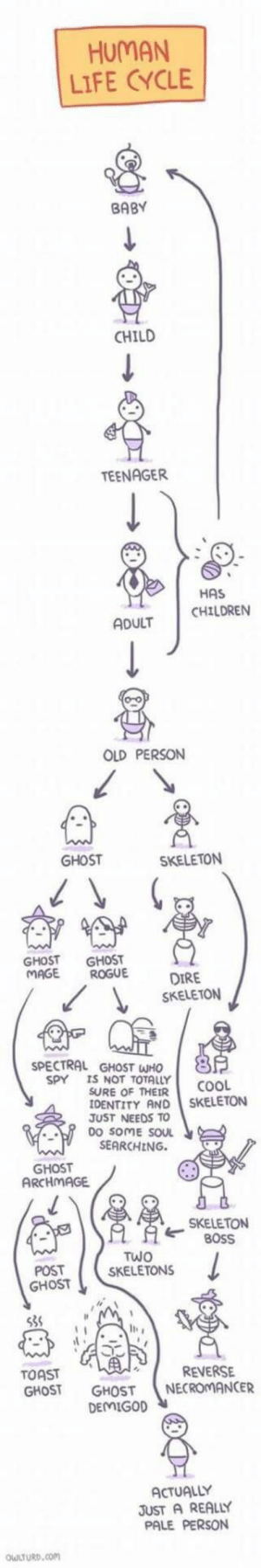 Children, Life, and Cool: HUMAN  LIFE CYCLE  BABY  CHILD  TEENAGER  HAS  ADULT CHILDREN  OLD PERSON  GHOST  SKELETON  GHOST GHOST  MAGE ROGU  DIRE  SKELETON  SPECTRAL GHOST WHO  SPY  IS NOT TOTALLY  SURE OF THEIR  IDENTITY AND SKELETON  JUST NEEDS TO  0O SOME SOUL  COOL  SEARCHING.  GHOST  ARCHMAGE  SKELETON  ピBOSS  TWO  SKELETON!S  POST  GHOST  le  TOAST  GHOST GHOST NECROMANCER  REVERSE  DEMIGOD  ACTUALLY  JUST A REALLY  PALE PERSON  LTURD,Com Bilderparade CDLXIII LangweileDich.net_Bilderparade_CDLXIII_81