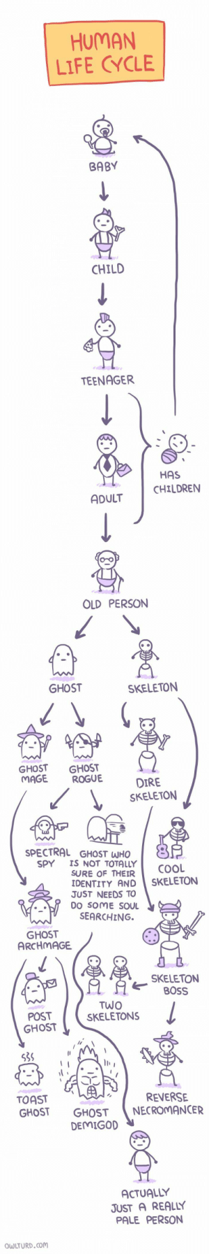 Life, Cool, and Ghost: HUMAN  LIFE CYCLE  BABY  CHILD  TEENAGER  HAS  CHILDRENN  ADULT  OLD PERSON  GHOST  SKELETON  GHOST GHOST  MAGE ROGUE  DIRE  SKELETON  SPECTRAL GHOST WHO  SPY IS NOT TOTALLY  SURE OF THEIR  COOL  DENTITY AND SKELETON  JUST NEEDS TO  DO SOME SOU  SEARCHING.  GHOST  ARCHMAGE  SKELETON  OSS  POST  GHOST  TWO  SKELETONS  la  539  TOAST  GHOST GHOSTNECROMANCER  REVERSE  DEMIGO  ACTUALLY  JUST A REALLY  PALE PERSON  WLTURD.com