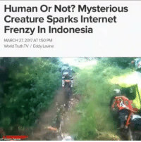 An unusual figure appears in Indonesian forest which may be proof of a lost, legendary tribe. There were dramatic scenes in Jakarta recently when a high profile bike tour took a disastrous turn when a rider fell from his bike in shock when a figure emerged from the forest which some have speculated was not a human being. The incredible moment when the BandaAceh-based motor trail group met the mysterious figure in Indonesia's most western province was caught on camera. The video clearly shows the lead rider falling from his bike in fright as a human-like figure, who is considerably smaller than the average person, appears suddenly on the track ahead bearing a wooden stick as though it was a weapon. The individual in the track stopped and observed the bikers for a brief moment before tearing off into the forest. Individual bikers attempted to track down the figure after he ran away, but despite the fact that they were on motorbikes and the figure was traveling on foot they were unable to catch up with him. The figure managed to elude them by darting into shrubbery vegetation and was last sighting disappearing into the deepest thicket of the forest. The video was posted online where it has attracted a huge amount of attention and speculation. While some people have suggested that the figure was some kind of supernatural being, others have suggested that he could have been a member of the legendary Mante tribe. The Mante tribe are believed to be an ethnic group who have inhabited this region of Indonesia for a long time. There has been no anthropological investigation attempting to contact the tribe and they have never sought out contact with other people living in the area. Owing to the fact that nothing is known about these people, it is commonly believed that they are nothing more than an urbanlegend. However, the emergence of this video may call this into question. ExplainThisToMe Anonymous_Indonesia Army_anons MissArmy_anon: Human Or Not? Mysterious  Creature Spark