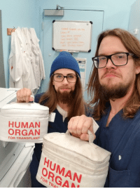 Halloween, Work, and Human: HUMAN  ORGAN  FOR TRANSPLANT  HUMAN  ORGA  ASA  FOR TRA My coworker came as me to work for Halloween