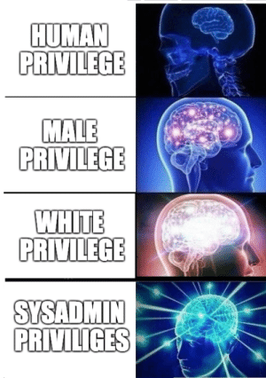 White, Human, and Modern: HUMAN  PRIVILEGE  MALE  PRIVILEGE  WHITE  SYSADMIN  PRIVILIGES Privilege in Modern Society