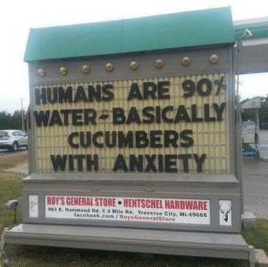 Facebook, Anxiety, and facebook.com: HUMANS ARE 901  WATER BASICALLY  CUCUMBERS  WITH ANXIETY  ROY'S GENERAL STORE HENTSCHEL HAROWARE  963 E. Hammond Rd. 3 Mile Rd. Traverse City, Mi.49686  facebook.com RoysGeneraistore