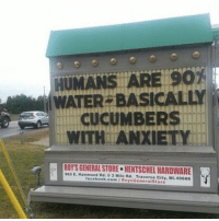 Memes, Anxiety, and 🤖: HUMANS ARE SO  ATER BASICALL  A  WITH IROYSGENERALSTORE HENTSCHELHARDWARE  Hammond Mile Rd. Traverse City, ML49686  facebook.com I RoysG  Store  eneral i'm def a cucumber with anxiety