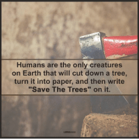 """Memes, 🤖, and Creature: Humans are the only creatures  on Earth that will cut down a tree,  turn it into paper, and then write  """"Save The Trees"""" on it. The Mind Unleashed"""