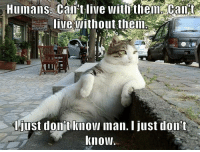 Quite the conundrum, isn't it?: Humans Can't live with them  lie without them  just dont knowl Iman. I just don't  Know. Quite the conundrum, isn't it?