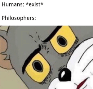 Wtf, Philosophers, and Humans: Humans: *exist*  Philosophers: WTF???
