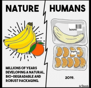 Instagram, Omg, and Banana: HUMANS  NATURE  banana  tangerine  MILLIONS OF YEARS  DEVELOPING A NATURAL  BIO-DEGRADABLE AND  2019  ROBUST PACKAGING.  de Resende OMG THIS IS THE END OF THE WORLD SO I MAKE INSTAGRAM POST