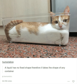 If it fits I sit: humoristics  A liquid has no fixed shape therefore it takes the shape of any  container  humoristics  83,785 notes If it fits I sit