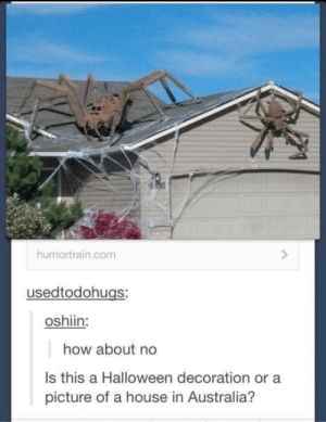 Halloween, Australia, and House: humortrain.com  usedtodohugs:  oshiin:  how about no  Is this a Halloween decoration or a  picture of a house in Australia? Most likely a house in Australia