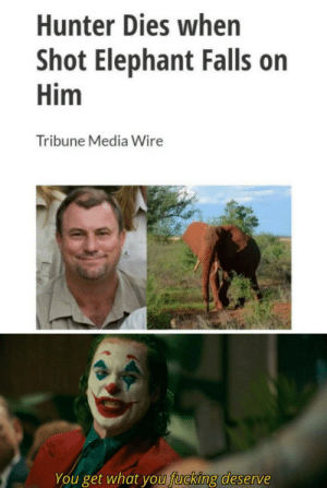 Falls: Hunter Dies when  Shot Elephant Falls on  Him  Tribune Media Wire  You get what you fucking deserve