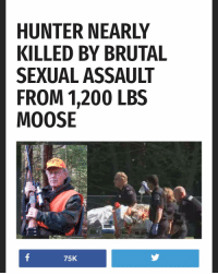 Bailey Jay, Dank Memes, and Moose: HUNTER NEARLY  KILLED BY BRUTAL  SEXUAL ASSAULT  FROM 1,200 LBS  MOOSE  75K 😳😳