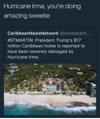 lol fuck trunp: Hurricane Irma, you're doing  amazing sweetie  CaribbeanNewsNetwork @caribbeann  #STMARTIN: President Trump's $17  million Caribbean home is reported to  have been severely damaged by  Hurricane Irma lol fuck trunp