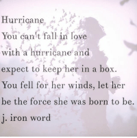 in love: Hurricane  You can't fall in love  with a hurricane and  expect to keep her in a box.  You fell for her winds, let her  be the force she was born to be.  i. iron word