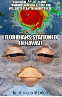 "Bitch, Florida, and Hawaii: HURRICANELANE IS THE MOST  POWERFULSTORM ON RECORD AND  WILL DESTROYANYTHINGIN ITS PATH.  FLORIDIANS STATIONED  IN HAWAI  fight me u lil bitch Shout-out to all the troops stationed in Hawaii with senior NCOs from Florida who said this hurricane was ""nothing."""