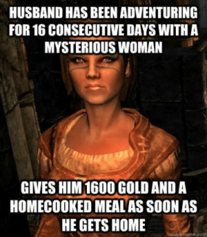Skyrim, Soon..., and Home: HUSBAND HAS BEEN ADVENTURING  FOR 16 CONSECUTIVE DAYS WITH A  MYSTERIOUS WOMAN  GIVES HIM 1600 GOLD AND A  HOMECOOKED MEALAS SOON AS  HE GETS HOME  quickmeme.com Better to Just Get Married in Skyrim