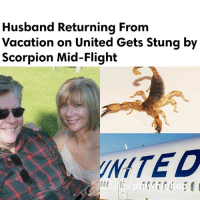 There is additional trouble for embattled UnitedAirlines as a man was stung by a scorpion on a recent flight from Houston, Texas, to Calgary, Canada. The passenger who was stung, Richard Bell was returning from vacation with his wife, Linda and were flying in business class. - FULL VIDEO& STORY AT PMWHIPHOP.COM LINK IN BIO: Husband Returning From  Vacation on United Gets Stung by  Scorpion Mid-Flight  INITED There is additional trouble for embattled UnitedAirlines as a man was stung by a scorpion on a recent flight from Houston, Texas, to Calgary, Canada. The passenger who was stung, Richard Bell was returning from vacation with his wife, Linda and were flying in business class. - FULL VIDEO& STORY AT PMWHIPHOP.COM LINK IN BIO
