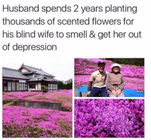 Looks like she found a keeper: Husband spends 2 years planting  thousands of scented flowers for  his blind wife to smell & get her out  of depression Looks like she found a keeper