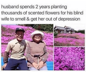 That's so cute.: husband spends 2 years planting  thousands of scented flowers for his blind  wife to smell & get her out of depression That's so cute.