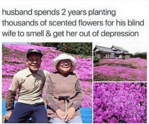 Respect 3000: husband spends 2 years planting  thousands of scented flowers for his blind  wife to smell & get her out of depression Respect 3000