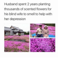Memes, Smell, and Depression: Husband spent 2 years planting  thousands of scented flowers for  his blind wife to smell to help with  her depression When someone loves you this much 😢💕