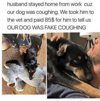 Fake, Work, and Home: husband stayed home from work cuz  our dog was coughing. We took him to  the vet and paid 85$ for him to tell us  OUR DOG WAS FAKE COUGHING Monday morning inspo @sullivansalsberry
