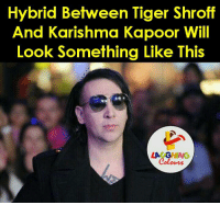 Tiger, Tigers, and Indianpeoplefacebook: Hybrid Between Tiger Shroff  And Karishma Kapoor Will  Look Something Like This That's Hilarious.. :P