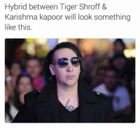 Memes, Tiger, and Tigers: Hybrid between Tiger Shroff &  Karishma kapoor will look something  like this