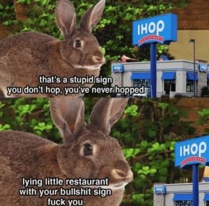 Me🐰irl: Iнор  Tнор  IHOP  that's a stupid sign  you don't hop, you've never hopped  Iнор  STALSANT  lying little restaurant  with your bullshit sign  fuck you  IHOP Me🐰irl