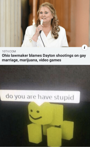 It do be like that: i  10TV.COM  Ohio lawmaker blames Dayton shootings on gay  marriage, marijuana, video games  do you are have stupid It do be like that