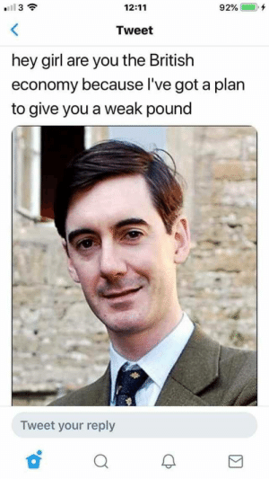 meirl by internalparticles MORE MEMES: I 3  12:11  92% (-), +  Tweet  hey girl are you the British  economy because l've got a plarn  to give you a weak pound  Tweet your reply meirl by internalparticles MORE MEMES