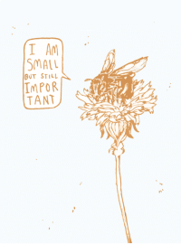 """Http, Bee, and Via: I A  SMALL  BUT STILL  IMPOR  TANT <p>You are a bee! via /r/wholesomememes <a href=""""http://ift.tt/2rd8bfH"""">http://ift.tt/2rd8bfH</a></p>"""