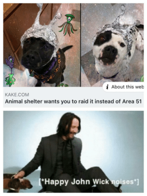 John Wick, Animal, and Animal Shelter: i About this web  KAKE.COM  Animal shelter wants you to raid it instead of Area 51  Happy John Wick noises*] New rule: you have to adopt a puppy before the raid