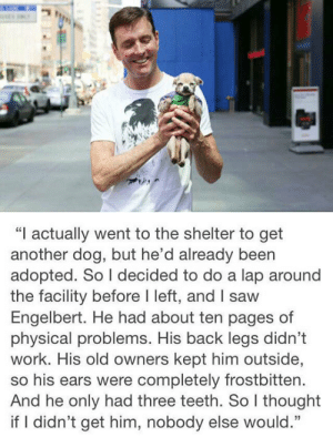 """Saw, Tumblr, and Work: """"I actually went to the shelter to get  another dog, but he'd already been  adopted. So I decided to do a lap around  the facility before I left, and I saw  Engelbert. He had about ten pages of  physical problems. His back legs didn't  work. His old owners kept him outside,  so his ears were completely frostbitten.  And he only had three teeth. So I thought  if I didn't get him, nobody else would."""" srsfunny:This Just Made Me So Happy"""