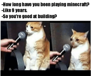 I am a master builder by StarvingWalrus MORE MEMES: I am a master builder by StarvingWalrus MORE MEMES
