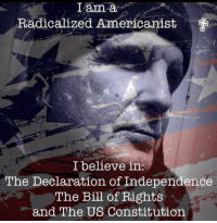 Memes, Constitution, and Declaration of Independence: I am a  Radicalized Americanist  l believe in:  The Declaration of Independence  The Bill of Rights  and The US Constitution Are you? -- Cold Dead Hands Apparel: CDH2A.COM/shop