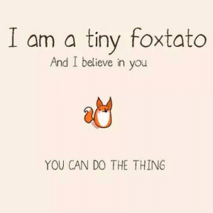 Believe In You: I am a tiny foxtato  And I believe in you  YOU CAN DO THE THING