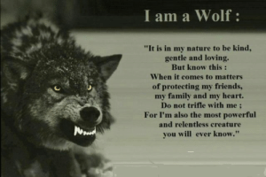"I Am wolf protector - Wolves - Gallery - Emo Forums: I am a Wolf:  ""It is in my nature to be kind,  gentle and loving.  But know this :  When it comes to matters  of protecting my friends,  my family and my heart.  Do not trifle with me;  For I'm also the most powerful  and relentless creature  you will ever know."" I Am wolf protector - Wolves - Gallery - Emo Forums"