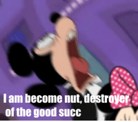 I am become nut, destroyer  of the good succ I am become nut