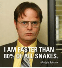 Let us never forget.: I AM FASTER THAN  80% OF ALL SNAKES.  Dwight Schrute Let us never forget.