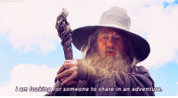 """thehouseholdcat:  sarahreesbrennan:   PETER JACKSON: Dear Sir Ian, here's my script of THE HOBBIT. Please come be Gandalf! SIR IAN MCKELLAN: Nah. PETER JACKSON: Dear Sir Ian, holy God, the success of these movies rests on your celebrated and award-winning silvery head. Please, please, please be Gandalf! Here's my revised script, subtitled WIZARDS RULE, DWARVES DROOL, PS YOU'RE HOTTER THAN MICHAEL FASSBENDER. SIR IAN MCKELLAN: … I will consider this. … I may have written you guys a little somethin' somethin'. Click on Gandalf for more…    """"SCRIPTWRITERS: Story of how a forest gets infested with giant spiders and goes evil.  PETER JACKSON: Can borrow Forbidden Forest set, check!"""" XD: I am looking for someone to share in an adventure thehouseholdcat:  sarahreesbrennan:   PETER JACKSON: Dear Sir Ian, here's my script of THE HOBBIT. Please come be Gandalf! SIR IAN MCKELLAN: Nah. PETER JACKSON: Dear Sir Ian, holy God, the success of these movies rests on your celebrated and award-winning silvery head. Please, please, please be Gandalf! Here's my revised script, subtitled WIZARDS RULE, DWARVES DROOL, PS YOU'RE HOTTER THAN MICHAEL FASSBENDER. SIR IAN MCKELLAN: … I will consider this. … I may have written you guys a little somethin' somethin'. Click on Gandalf for more…    """"SCRIPTWRITERS: Story of how a forest gets infested with giant spiders and goes evil.  PETER JACKSON: Can borrow Forbidden Forest set, check!"""" XD"""