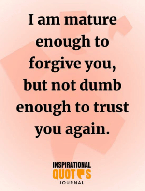Dumb, Memes, and 🤖: I am mature  enough to  forgive you,  but not dumb  enough to trust  you again.  INSPIRATIONAL  QUOT S  JOURNAL <3