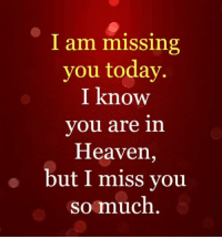 I am missing  you today.  I know  you are in  Heaven,  but I miss vou  somuch For the LOVED ONE in Heaven! ❤️