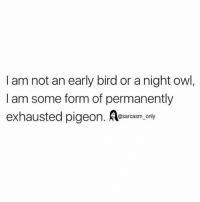 SarcasmOnly: I am not an early bird or a night owl,  I am some form of permanently  exhausted pigeon. arcasn. only SarcasmOnly