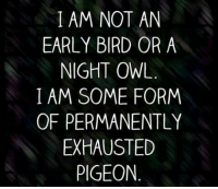 ~Hope: I AM NOT AN  EARLY BIRD OR A  NIGHT OWL  I AM SOME FORM  OF PERMANENTLY  EXHAUSTED  PIGEON ~Hope