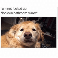 @mytherapistsays is hands down the best account on Instagram: i am not fucked up  *looks in bathroom mirror @mytherapistsays is hands down the best account on Instagram
